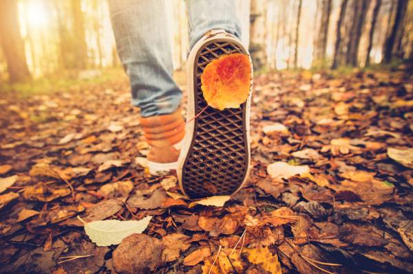 How to keep active in Edinburgh this Autumn