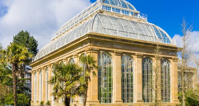History in Bloom: Edinburgh's Royal Botanic Garden turns 350