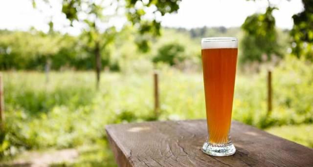 Top Ten Beer Gardens To Visit In Edinburgh This Summer
