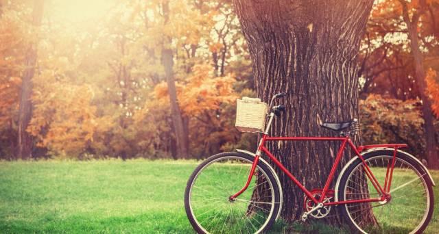 New city bike park rolls into Edinburgh for 2017